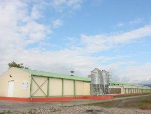 Baia Mare - Romavis - farma živine – poliuretanski paneli