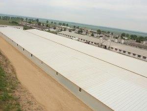 Tulcea – Carniprod – farma svinja – poliuretanski paneli